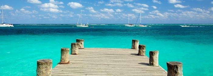 Actividades_en_puerto_morelos_-_nadar_con_delfines_-_Delphinus.png