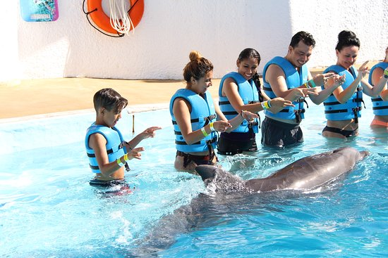 semana-santa-en-cancun-acuario.jpg