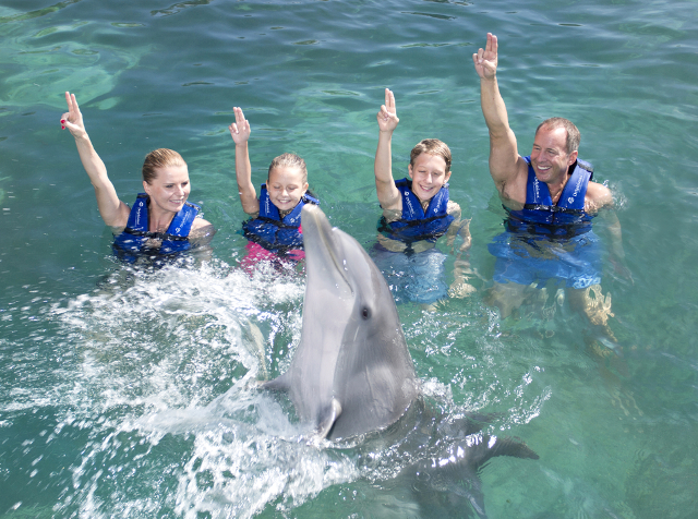 swim-with-dolphins-all-inclusive-xcaret.png