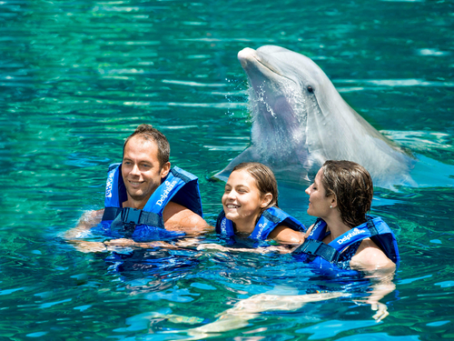 swim-with-dolphins-xel-ha.png