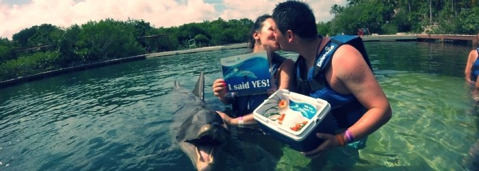 swim-with-dolphins-in-Cancun-proposal