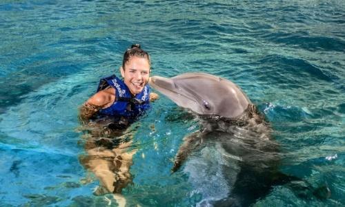 xcaret-nado-con-delfines