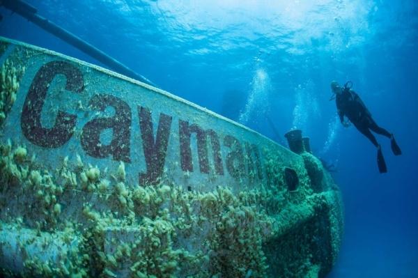 mejores-lugares-en-el-mundo-nadar-con-delfines
