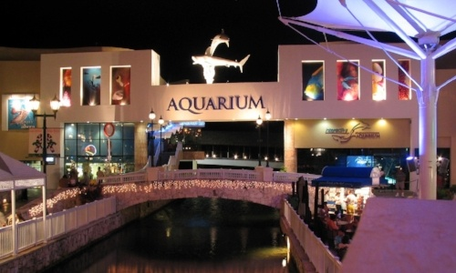 living-in-cancun-interactive-acuarium-of-cancun
