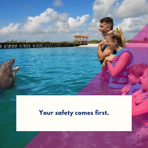 nadar-con-delfines-por-primera-vez (2)