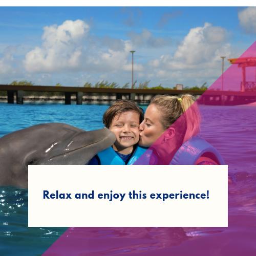 nadar-con-delfines-por-primera-vez