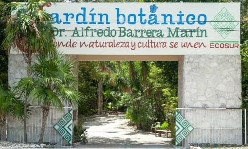puerto-morelos-jardin-botanico.jpg
