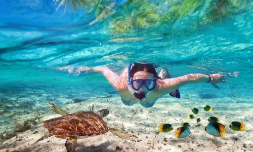 snorkel-puerto-morelos.jpg