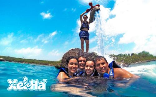 Delphinus-swim-with-dolphins-in-xel-ha-river