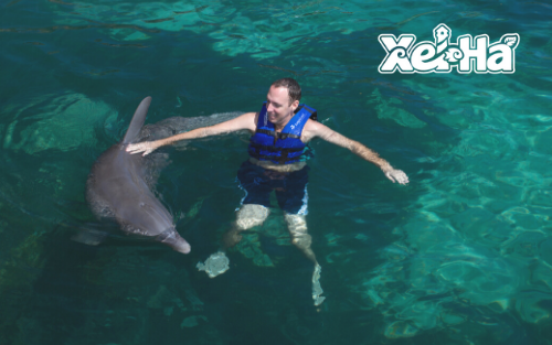 Delphinus-swim-with-dolphins-in-xel-ha-sanctuary