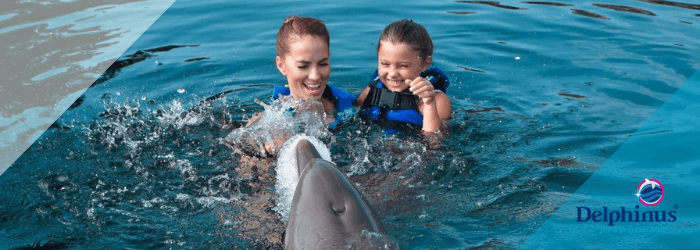 Delphinus splash wars