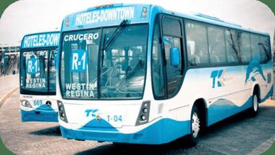 Delphinus public bus