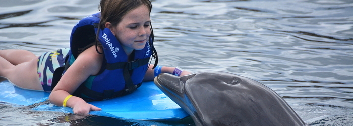 swimming-with-dolphins-kids_-_Delphinus.png