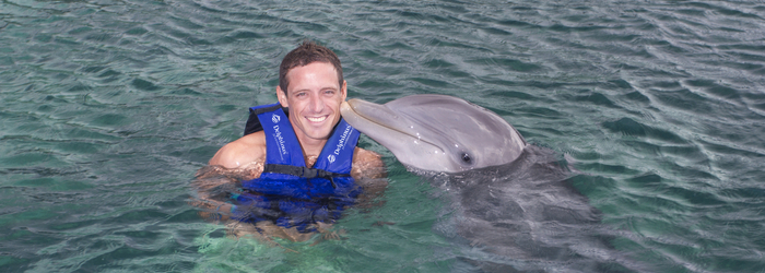 what-to-do-for-the-mexican-holiday_-_swimming-with-dolphins-in-cancun.png