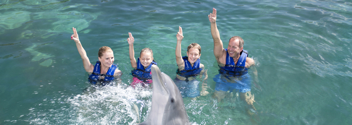 swim-with-dolphins-in-cancun-families.png
