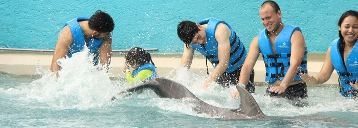world-water-day-Delphinus..png