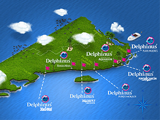 Locations Delphinus