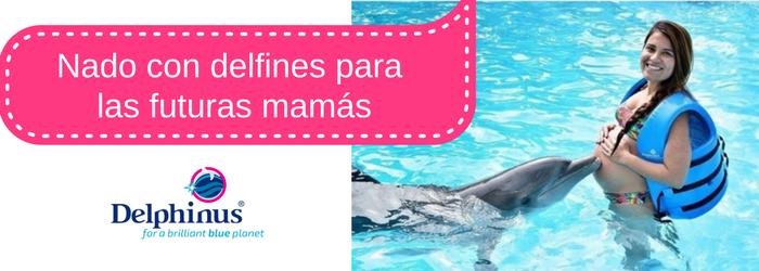 Nado-con-delfines-para-futuras-mamas.png