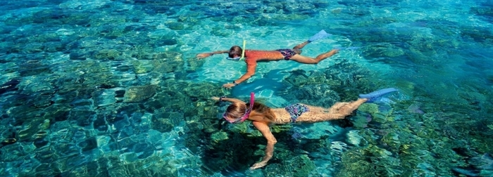 5 aquatic activities to do during your vacations in Cancun