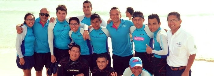 Dolphin rescue and reintroduction on Cancún: The story