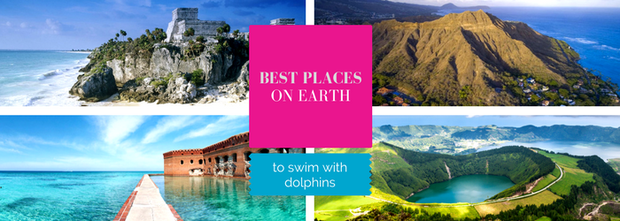 best-places-to-swim-with-dolphins