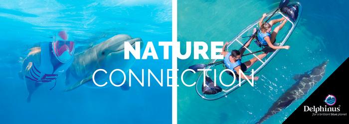 delphinus-Nature-connection