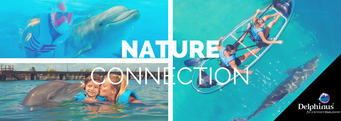 Discover the new experience of connection with nature