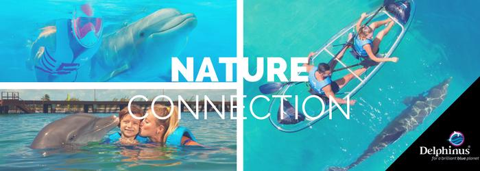 Conoce la nueva experiencia de conexión con la naturaleza