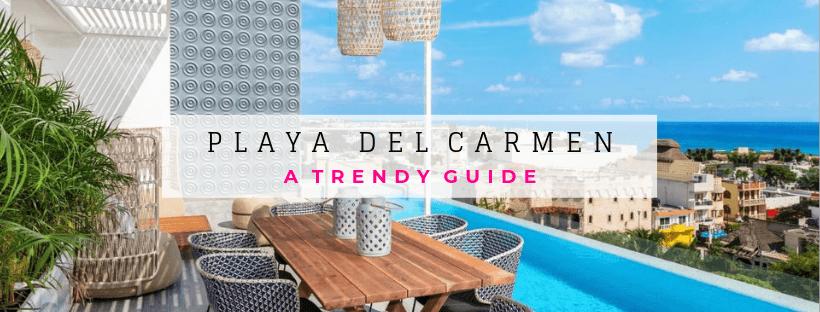 Delphinus Playa del Carmen trendy guide