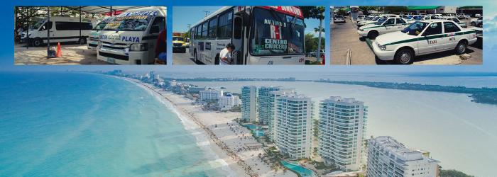 Delphinus Cancun public transportation tips