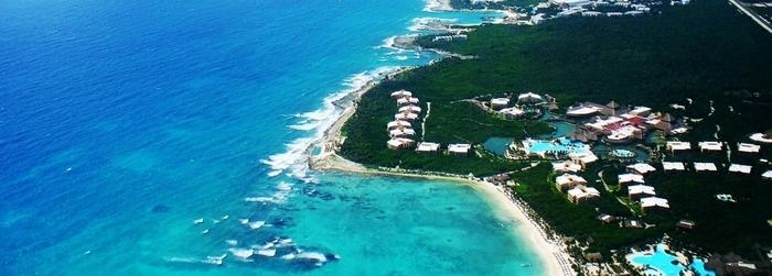 los_mejores_lugares_para_nadar_con_delfines_en_Mexico-Delphinus.png