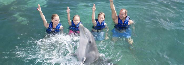 nadar_con_delfines_y_personalidad_-_Delphinus.png
