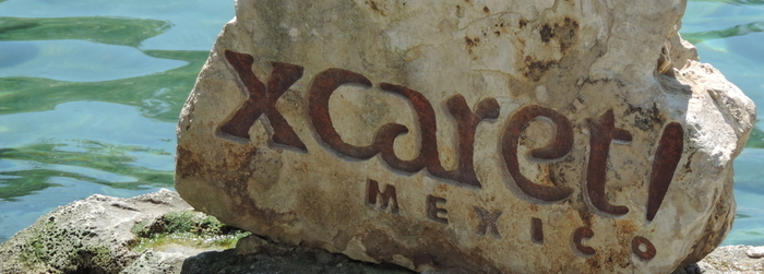 Swim with dolphins and 4 activities you should do in Xcaret