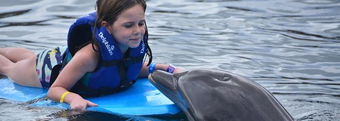 nado_con_delfines_para_nios_-_Delphinus.png