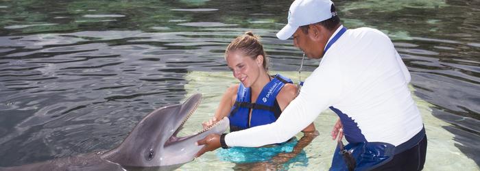 [INFOGRAFÍA] 5 tips para antes de nadar con delfines
